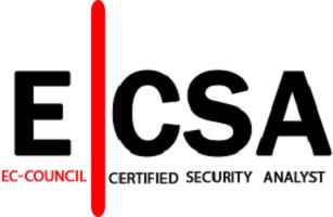 دانلود دوره ECSA