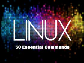 linux essential commands